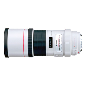 EF 300mm f/4L IS USM (케이스포함)