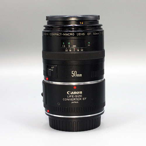 CANON, EF50mm f2.5 macro + LIFE SIZE CONVERTER